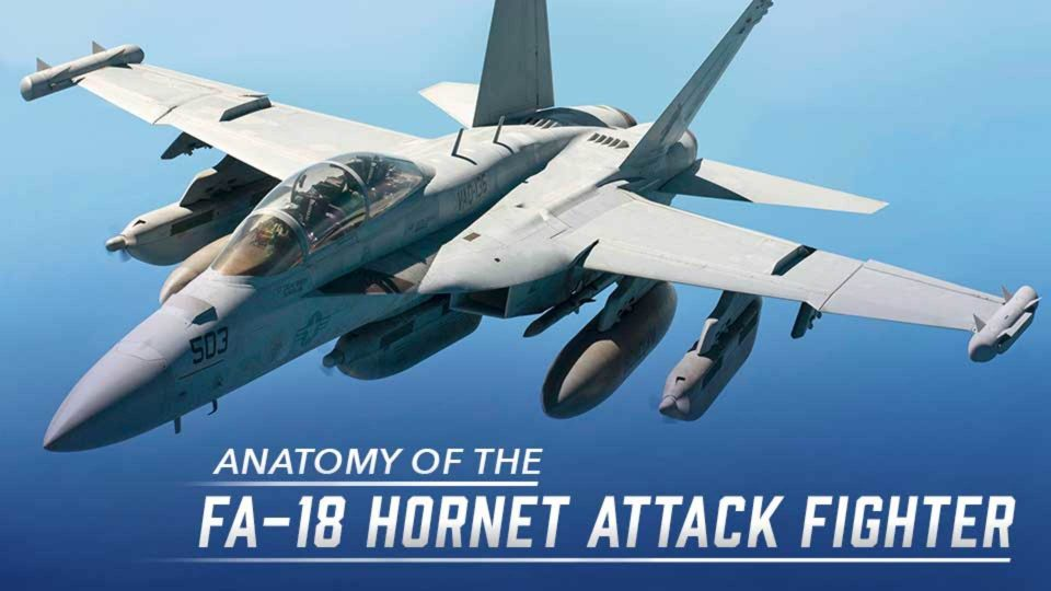 Anatomy Of The FA-18 Hornet Attack Fighter