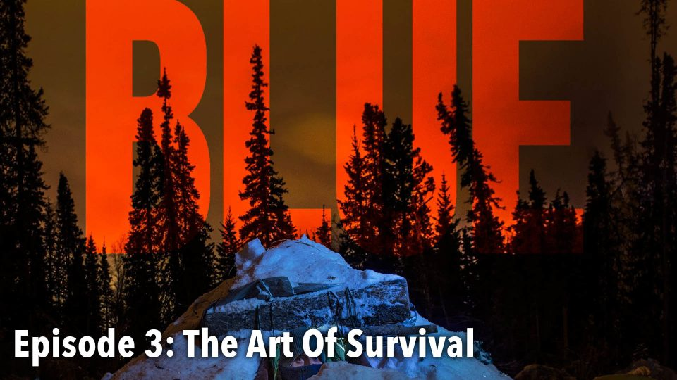 BLUE – Episode 3: The Art Of Survival