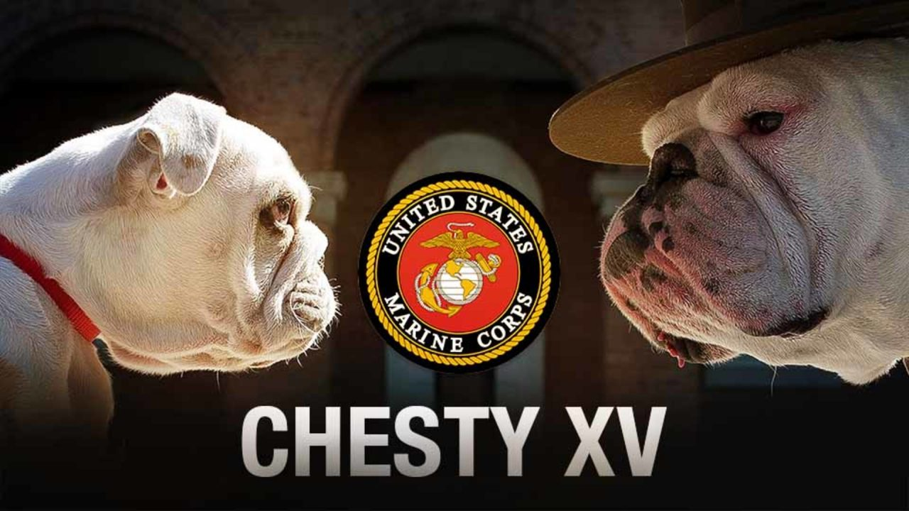 Chesty XV Has Arrived