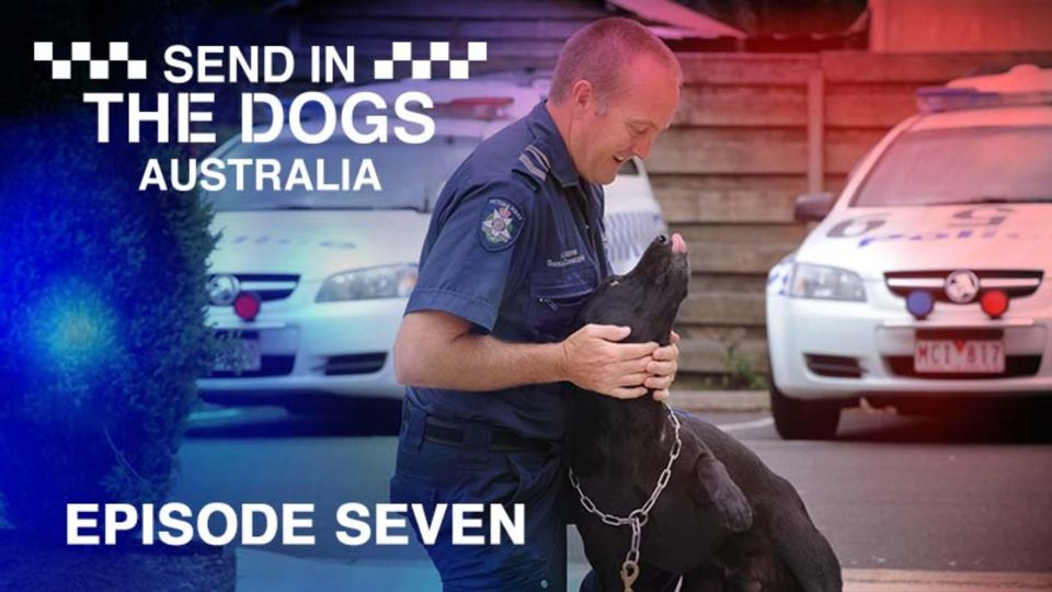 Send In The Dogs Australia – Episode 7