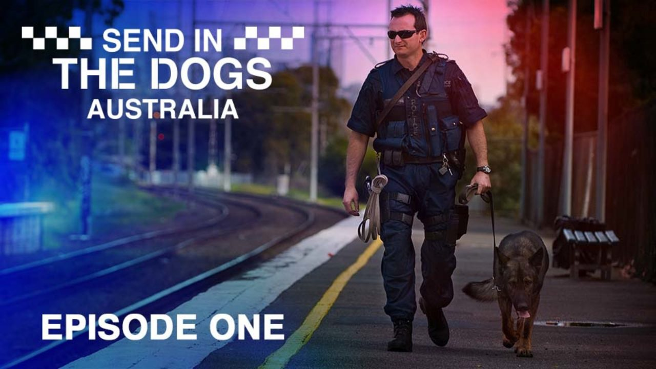 Send In The Dogs Australia – Episode 1