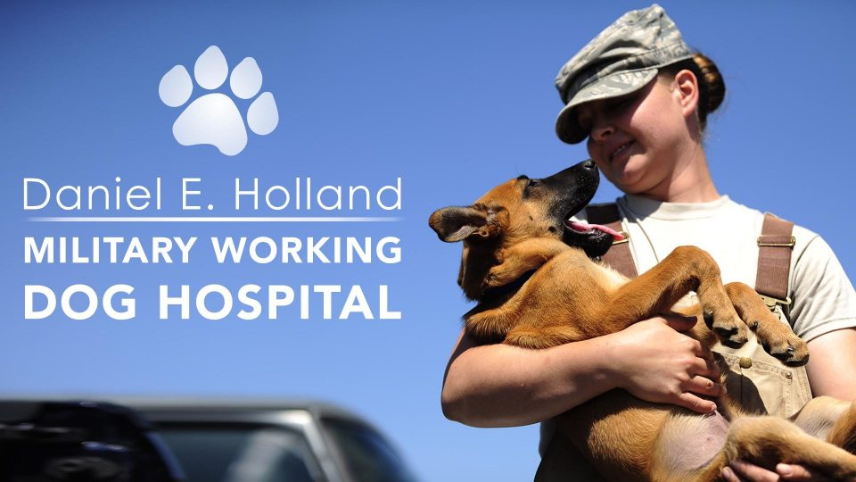 Military Working Dog Hospital