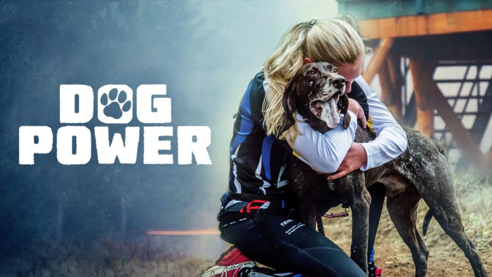 Dog Power