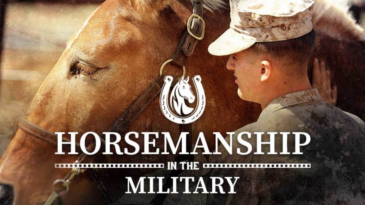 Horsemanship in the Military