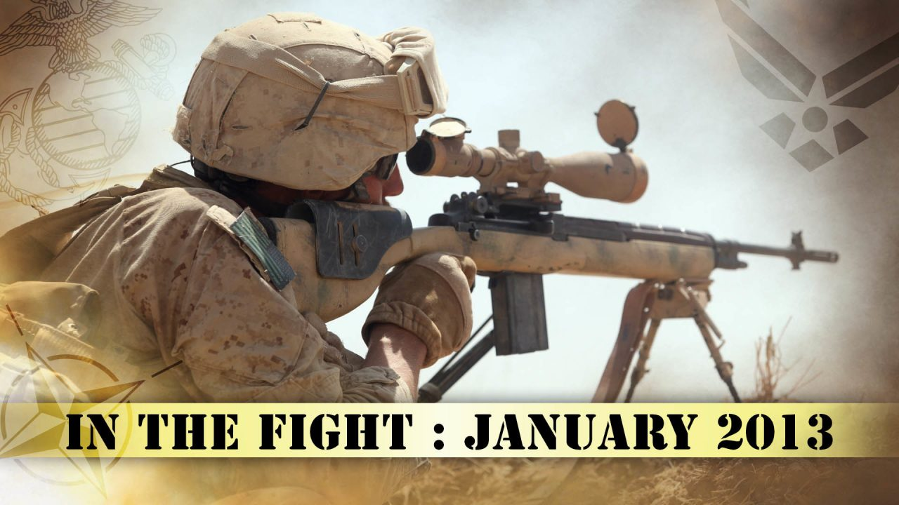 In The Fight – January 2013