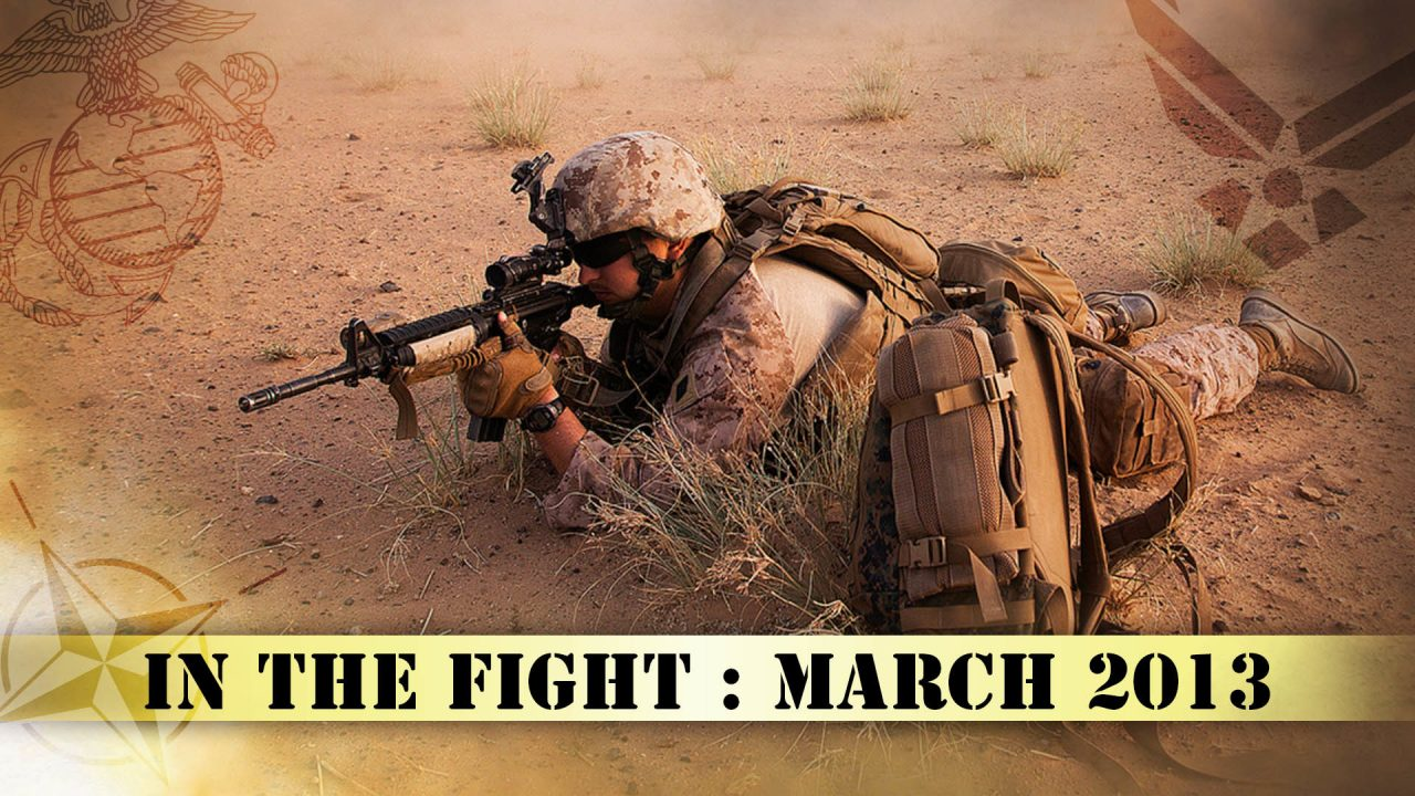 In The Fight – March 2013