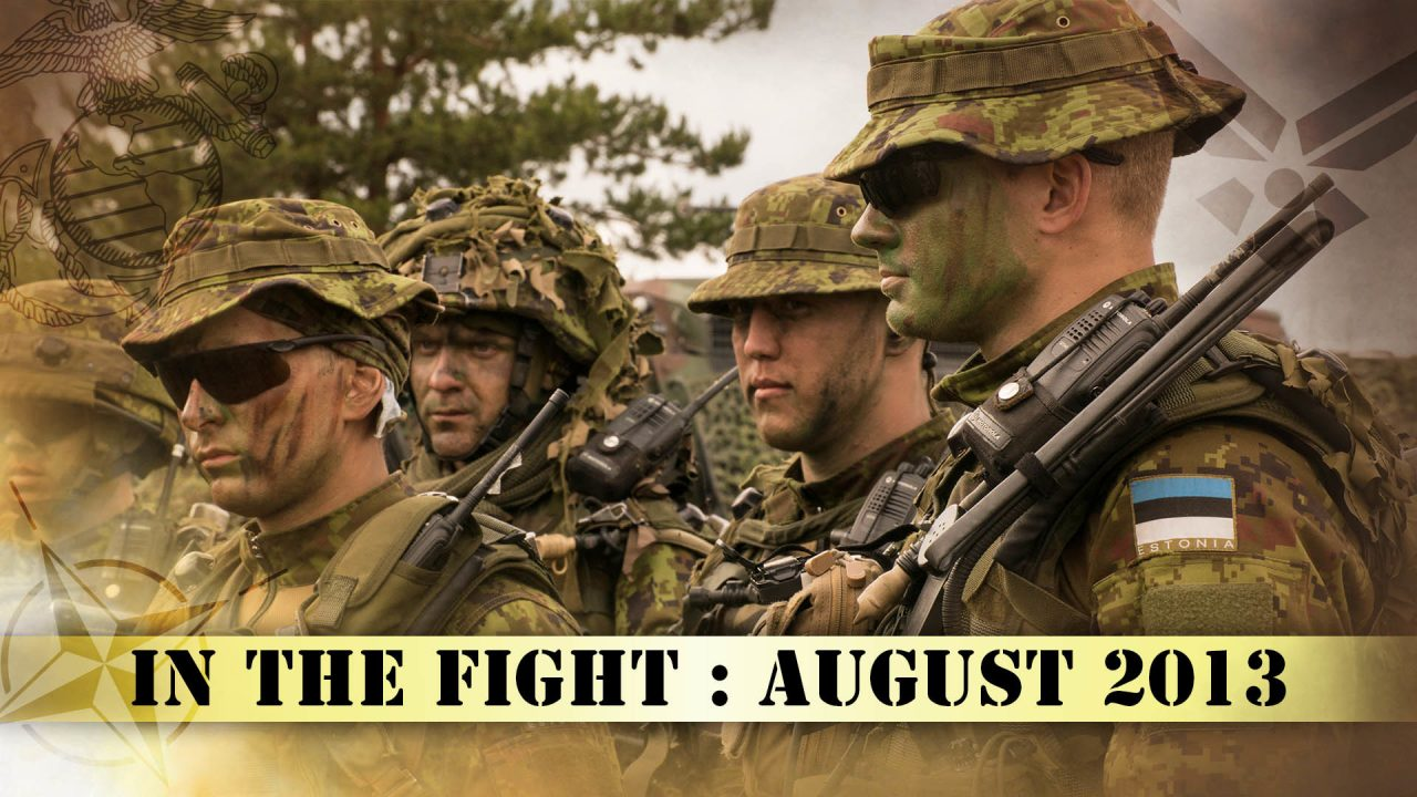 In The Fight – August 2013