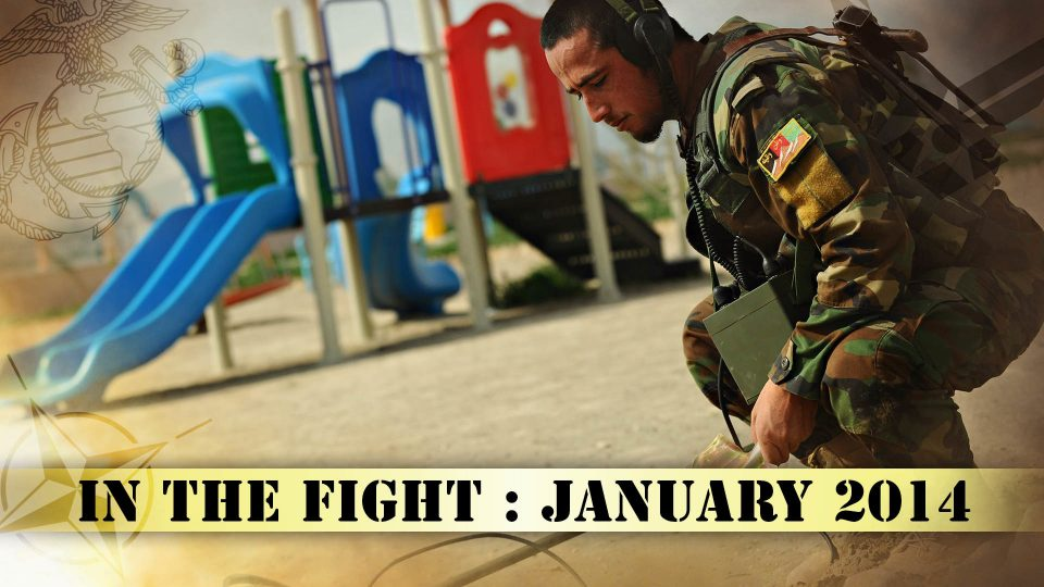 In The Fight – January 2014