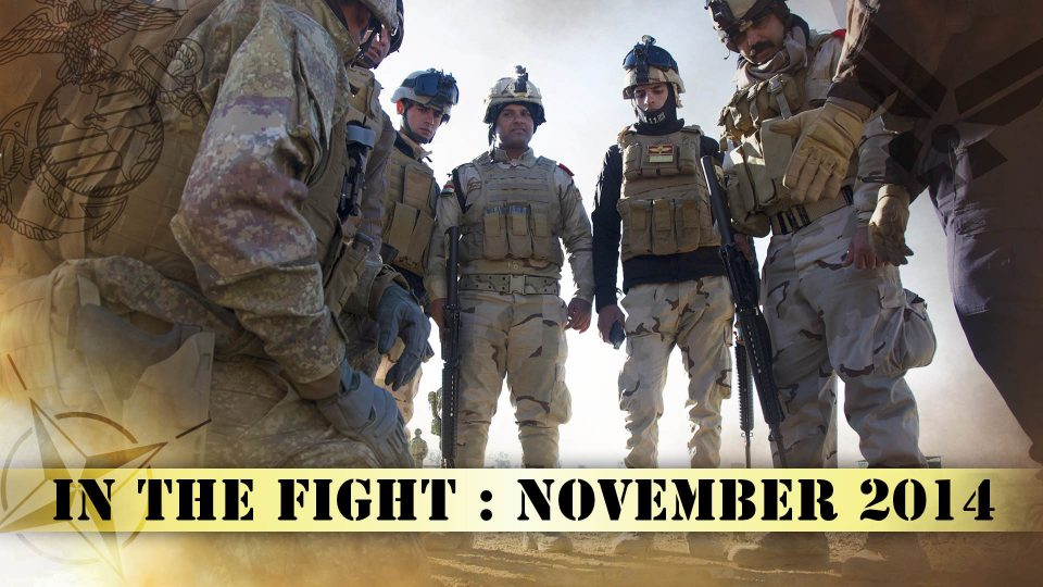 In The Fight – November 2014