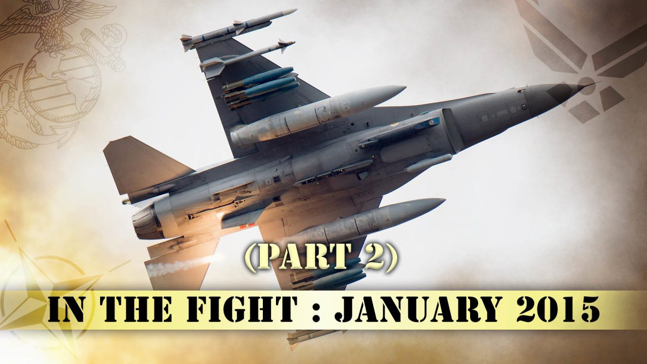 In The Fight – January 2015 (Part Two)