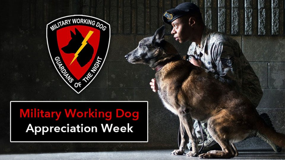 Military Working Dog Appreciation Week