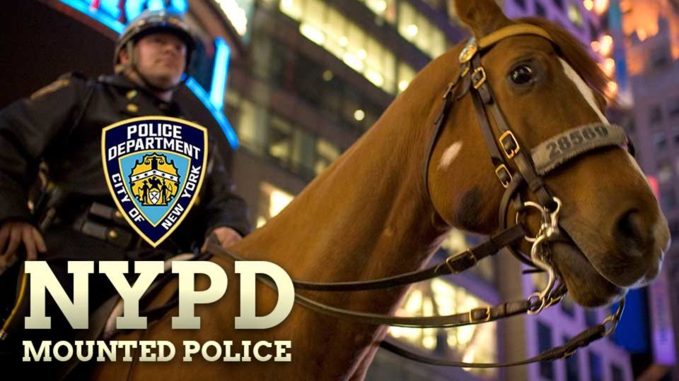 On-Duty With NYPD's Mounted Police