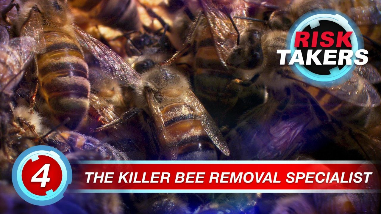 Risk Takers – Season 2 – Episode 4: Killer Bee Removal Specialist