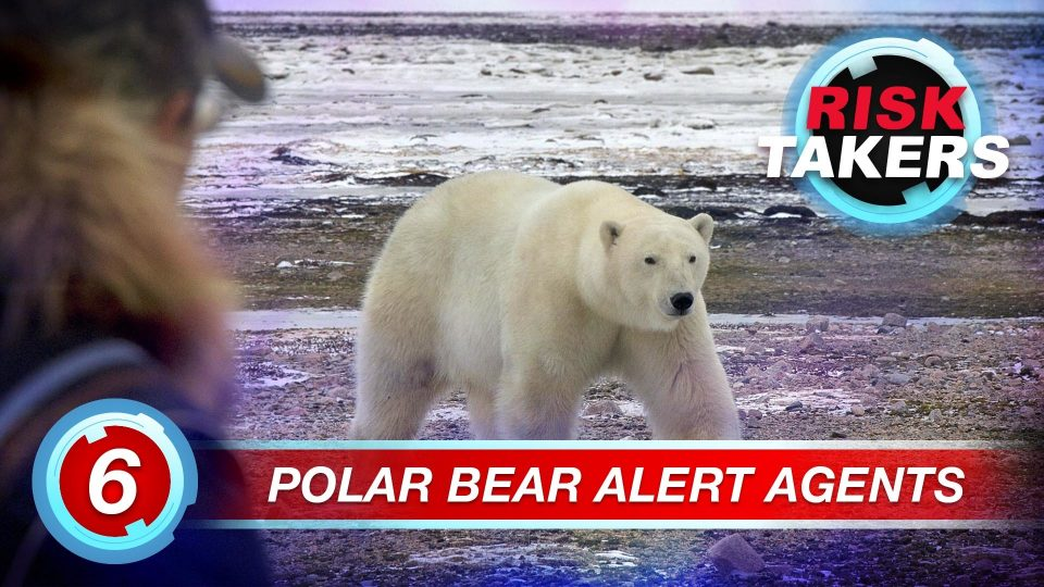 Risk Takers – Season 2 – Episode 6: Polar Bear Alert Agents