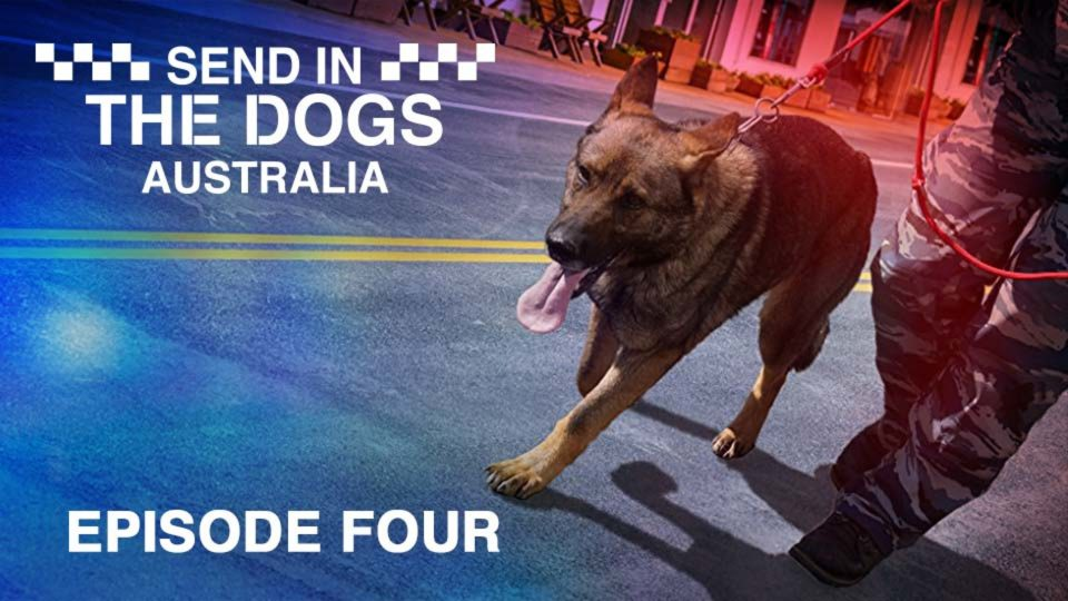 Send In The Dogs Australia – Episode 4