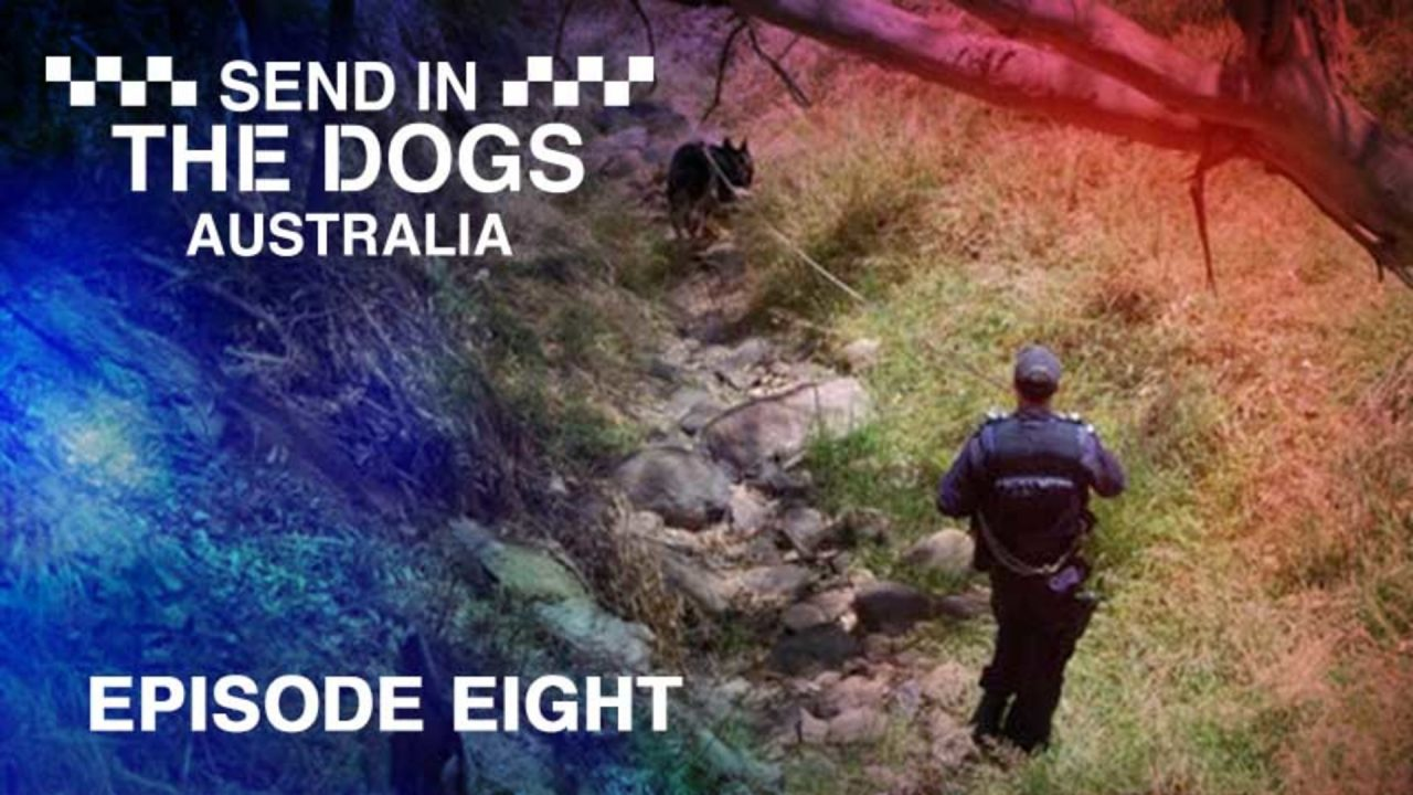 Send In The Dogs Australia – Episode 8