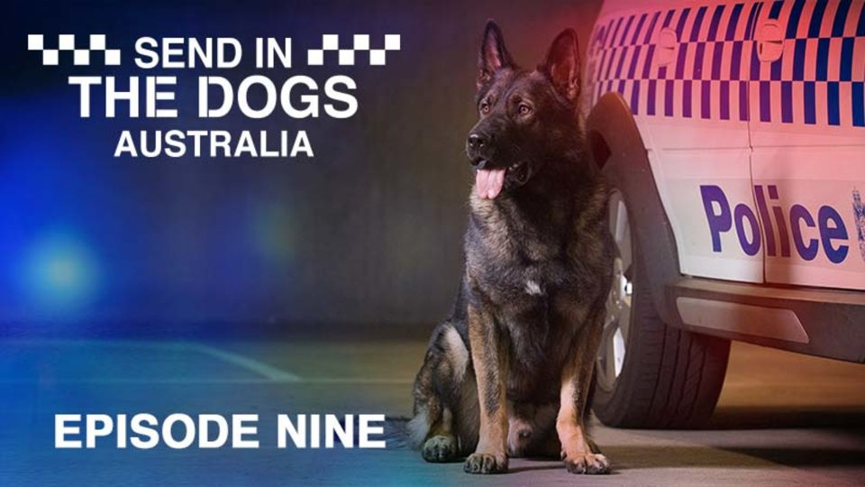 Send In The Dogs Australia – Episode 9