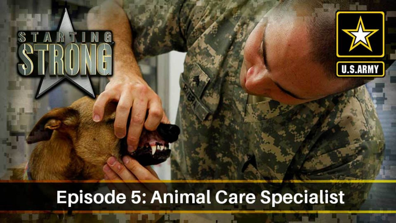 Starting Strong – Season 2 – Episode 5: Animal Care Specialist
