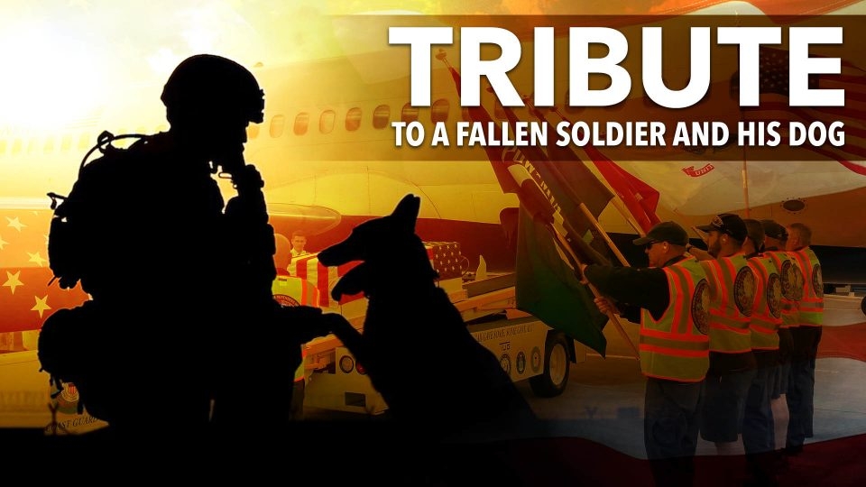 Tribute To A Fallen Soldier And His Dog