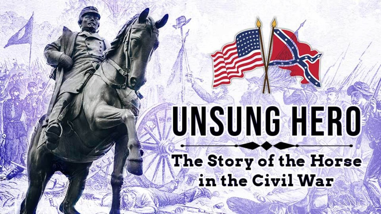 Unsung Hero The Horse in the Civil War