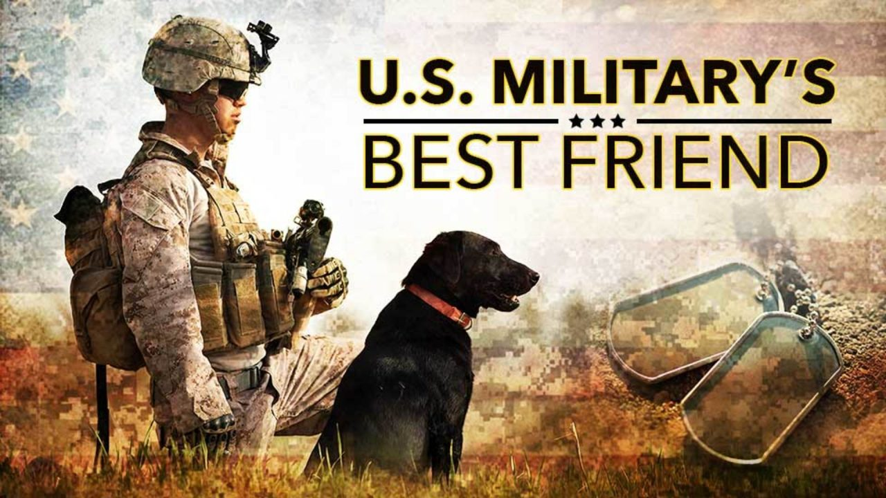 U.S. Military's Best Friend