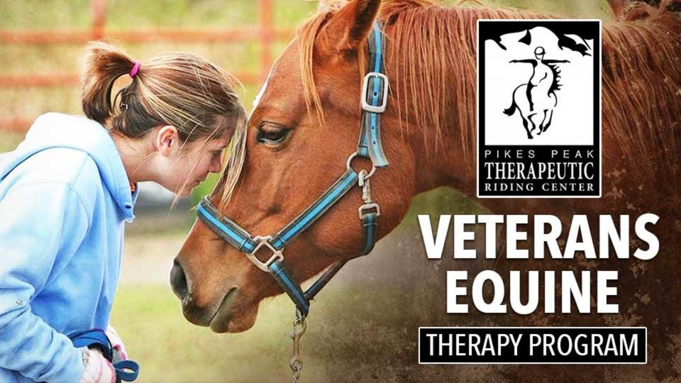 Veteran's Equine Therapy Program