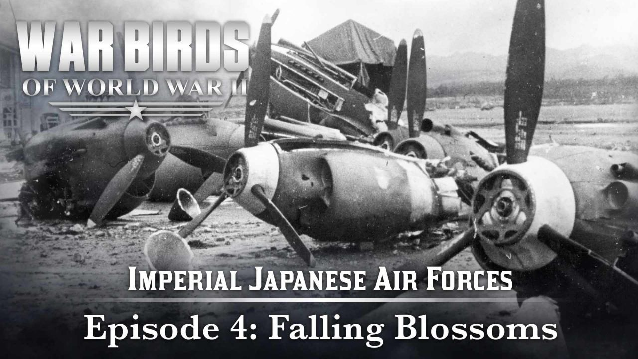 Warbirds Of World War II – Imperial Japanese Air Forces – Episode 4: Falling Blossoms